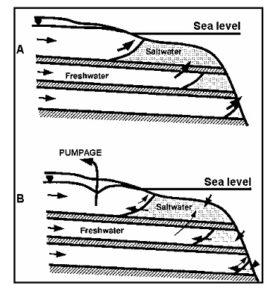 Potongan yang ideal suatu sistem akuifer pantai